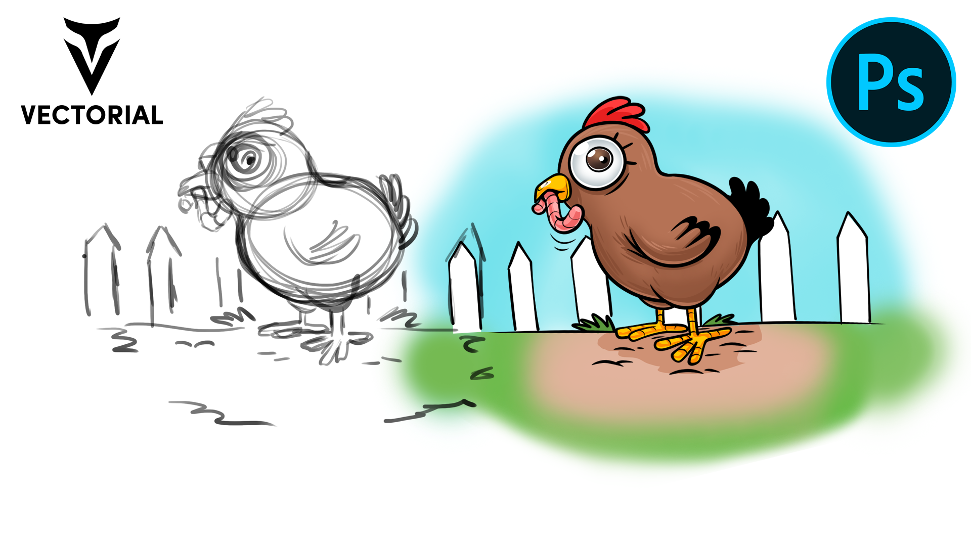 How to draw a Chicken in Adobe Photoshop