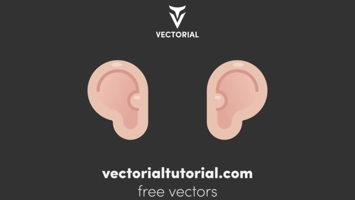 Flat design Ears, Free vector illustration, isolated on white background