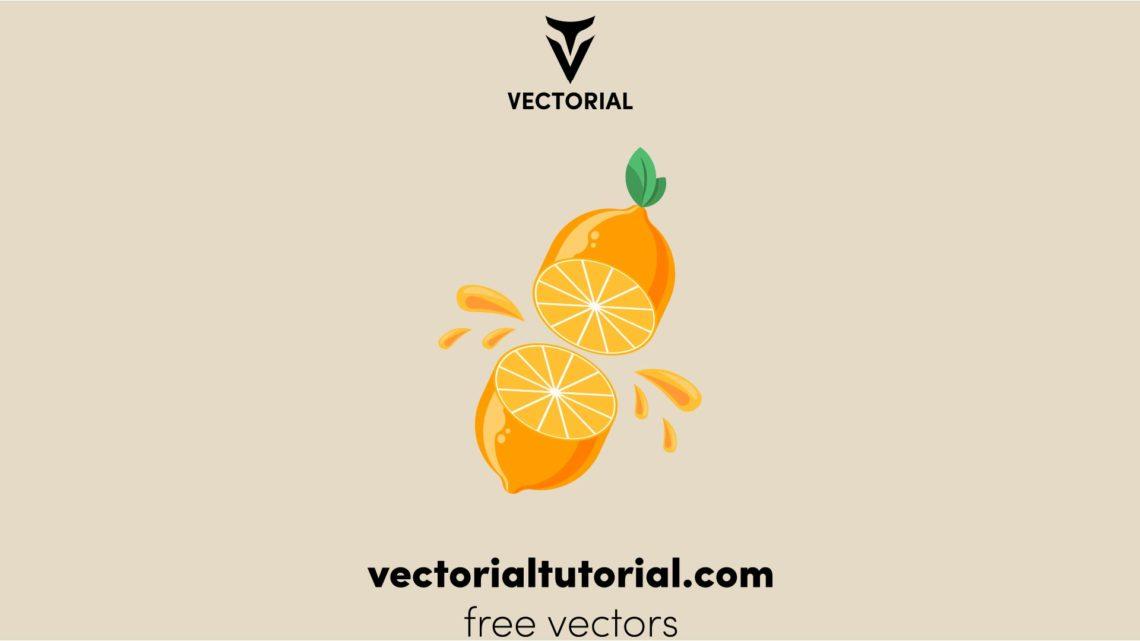Flat design Half sliced of yellow lemon fruit, Lemon vector illustration