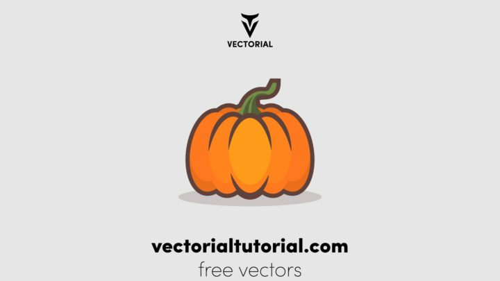 Pumpkin vector illustration, Pumpkin flat icon, isolated on background